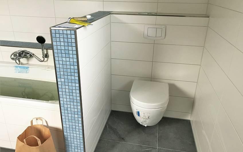 Blau-weiße Fliesen in einem Kern-Haus-Badezimmer